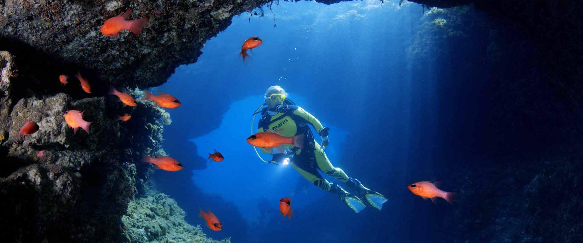 Scuba Diving Waikiki, Honolulu, Oahu, North Shore | Banzai