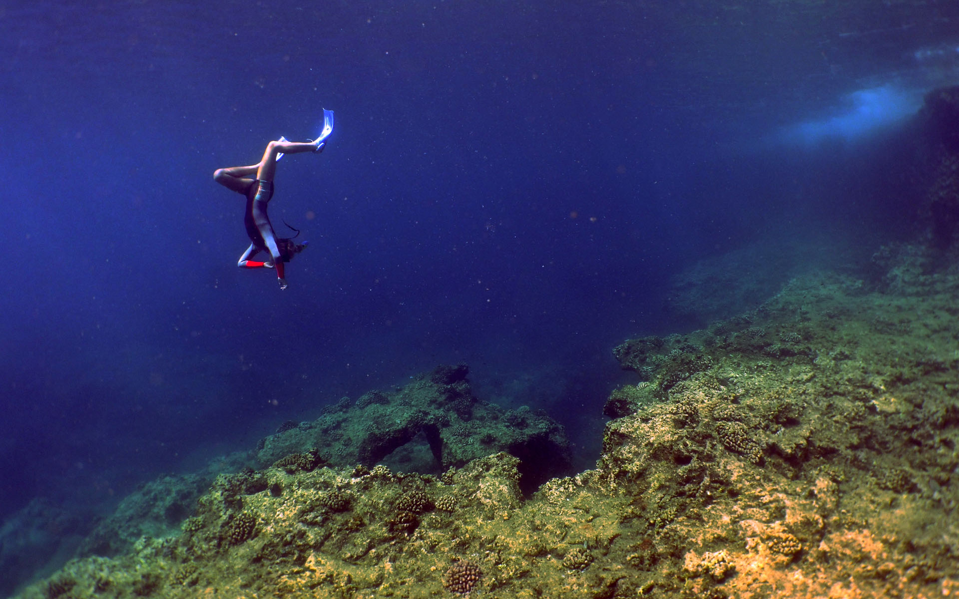 oahu hawaii snorkel tour 1