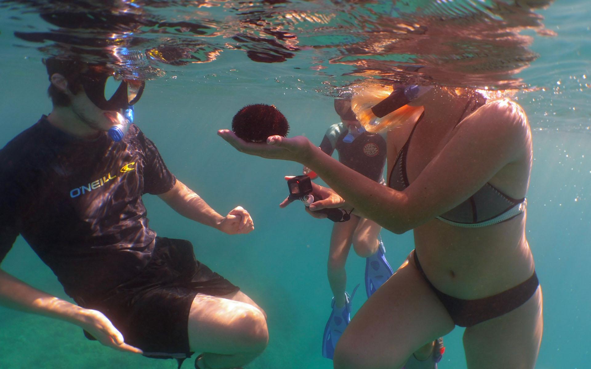oahu hawaii snorkel tour 4