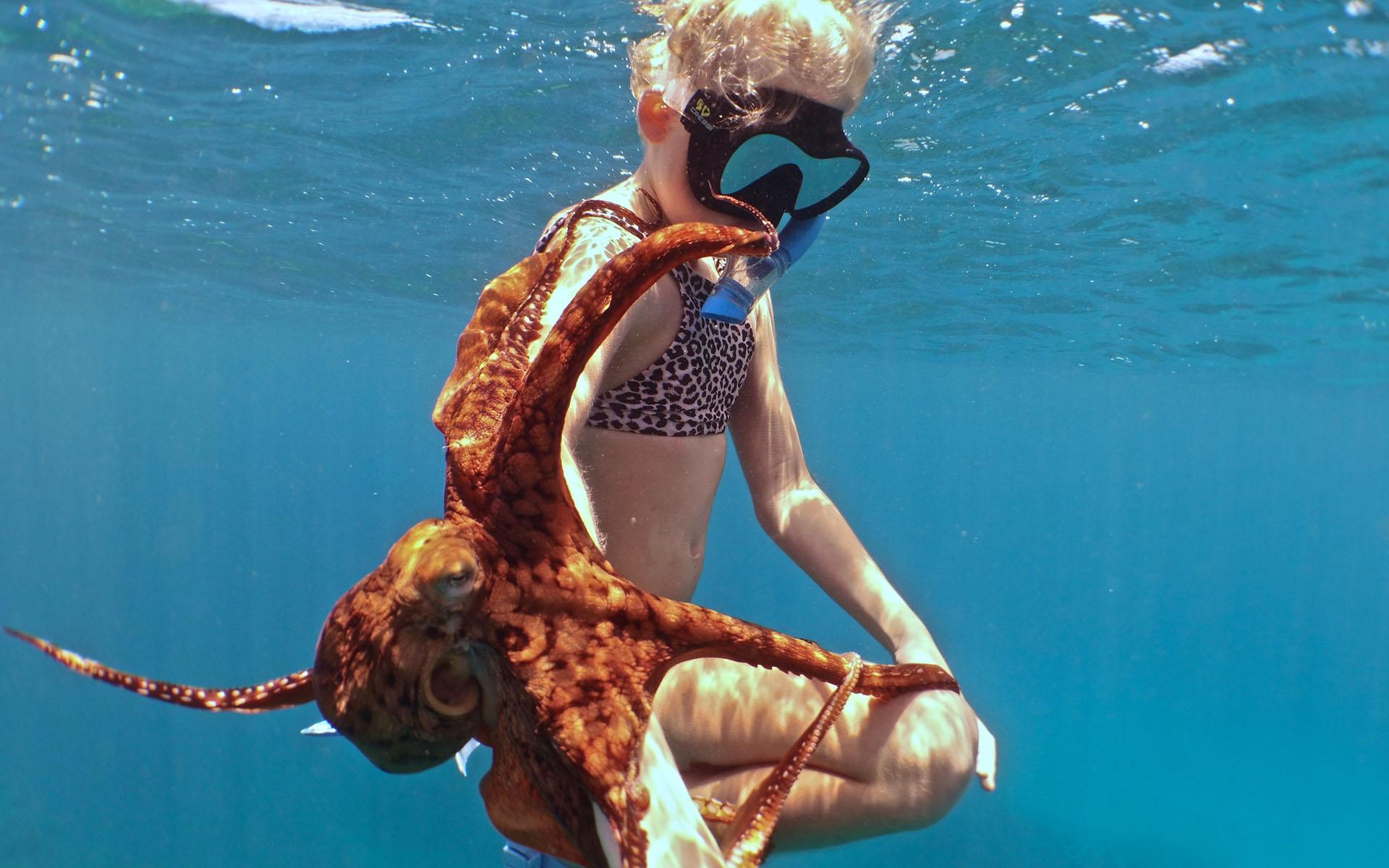 oahu hawaii snorkel tour 7