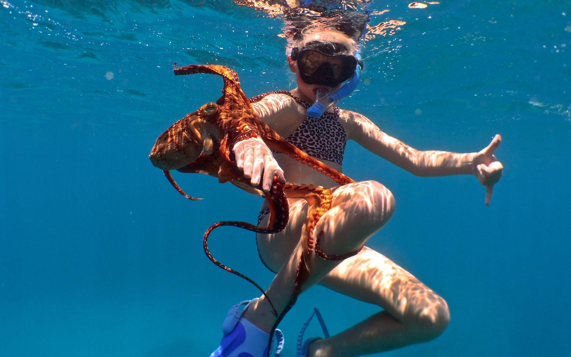oahu hawaii snorkel tour 8