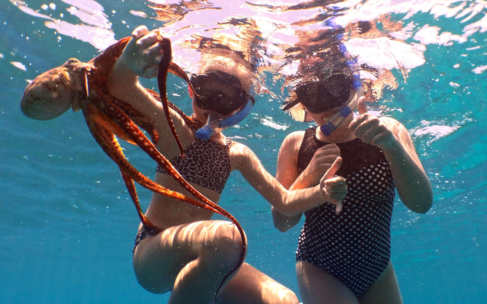 oahu hawaii snorkel tour 9